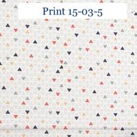 Print 03-5