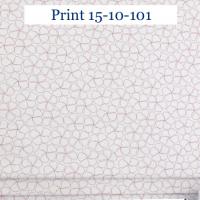 Print 10-101