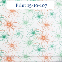 Print 10-107