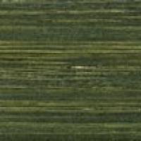 Жалюзи  деревянные Bamboo malahit 25 мм
